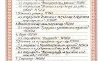 Licenz_CPO_2.jpg
